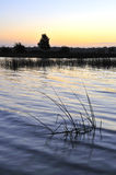 Lough Ennell Sunset Royalty Free Stock Photos