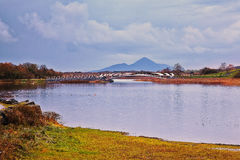 Lough Lannagh Royaltyfri Bild