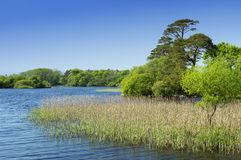 Lough Leane in Ireland Stock Photos