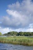 Lough Leane Lake, Killarney National Park. County Kerry; Ireland Stock Photo