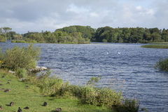 Lough Leane Lake, Killarney National Park Stock Image
