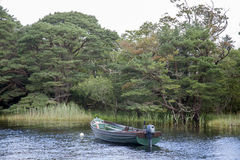 Lough Leane Lake, Killarney National Park, County Kerry Royalty Free Stock Photography