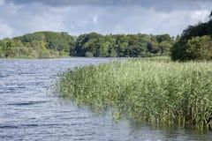 Lough Leane Lake, Killarney National Park Royalty Free Stock Photography
