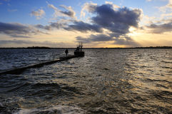 Free Lough Owel Stock Photos - 7207813