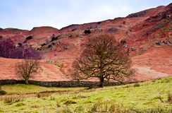 Loughrigg Fell. Above Rydal Water in the English Lake District Stock Photo