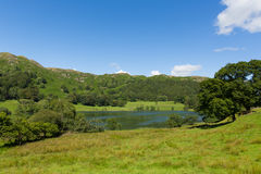 Loughrigg Tarn Lake District Cumbria England situated north of Windermere and village of Skelwith Bridge. On a beautiful summer day with blue sky Stock Photos