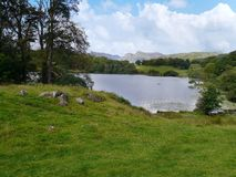 Loughrigg Tarn, Lake District Stock Images