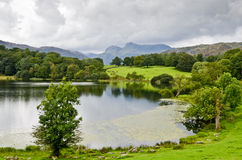 Loughrigg Tarn och de Langdale pikesna Royaltyfria Foton