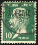 Louis Pasteur 库存照片