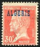 Louis Pasteur 免版税库存照片