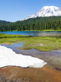 Louise Lake and Mt Rainier Stock Photos