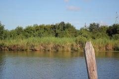 Louisiana-Bayou-Sumpfgebiete lizenzfreie stockfotografie
