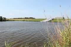 Louisiana-Bayou-Szene lizenzfreie stockfotos