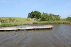 Louisiana-Bayou-Szene stockfotografie