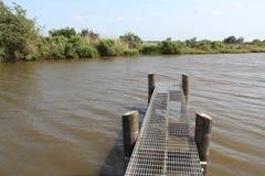 Louisiana-Bayou-Szene lizenzfreies stockfoto