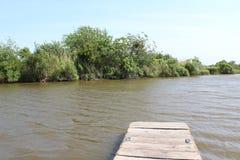 Louisiana-Bayou-Szene stockfoto
