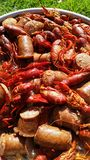 Louisiana Crawfish boil Stock Photos