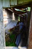 Louisiana ladugårdotta 05 som in ser Fotografering för Bildbyråer