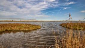 The Louisiana Marsh. The saltmarsh on the Louisiana Gulf Coast stock photo