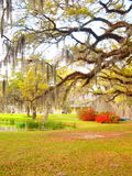 Louisiana plantation royalty free stock photography