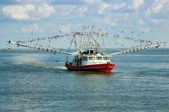 Louisiana räkafartyg Royaltyfri Fotografi