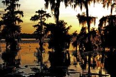 Louisiana soluppsättning, med konturn av ägretthägret i bakgrunden Arkivfoto