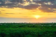 Louisiana-Sonnenuntergang lizenzfreie stockbilder