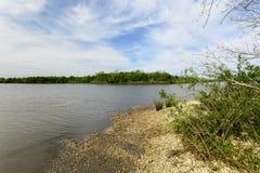 Louisiana-Sumpfgebiete Stockfotografie