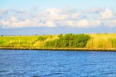 The Louisiana Wetlands. The natural marsh on a bayou in South Louisiana stock photography