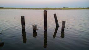 Louisiane Bayou Stock Foto's