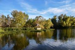 Louisiane Bayou, landschap Royalty-vrije Stock Afbeeldingen