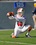 Louisville Cardinals punter Josh Bleser Stock Images