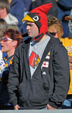 Louisville football fan. MORGANTOWN, WV - NOVEMBER 5: A Louisville Cardinal fan watches the action from the stands wearing a Cardinal hat during the football royalty free stock photo