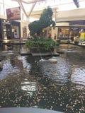 Louisville-Mall stockfotos