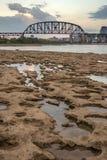 Louisville och drevbock arkivbild