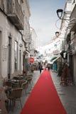 Loule,葡萄牙- 2016年12月7日, :走在隆重在有圣诞节装饰的镇街道 库存照片