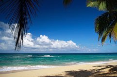 Lounge beach with leaf of palm Stock Images
