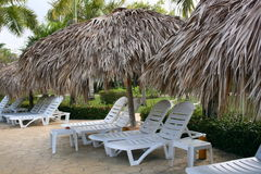 Lounge chairs at resort. A view of unoccupied chaise or lounge chairs under thatched sun umbrellas or cabanas at a tropical resort Stock Image