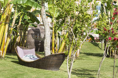 Lounge sunbeds in a green garden on a sea background Royalty Free Stock Photos