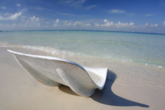 Lounger on the Beach Royalty Free Stock Image