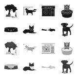Lounger for a pet, clipping of claws in a vet clinic, lying dog, puppy with a ball. Vet clinic and pet,dog care set. Collection icons in black,monochrome style Royalty Free Stock Photos