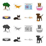 Lounger for a pet, clipping of claws in a vet clinic, lying dog, puppy with a ball. Vet clinic and pet,dog care set. Collection icons in cartoon,monochrome Stock Images