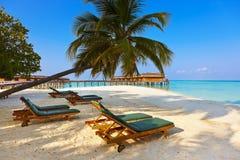 Loungers на пляже Мальдивов Стоковое фото RF