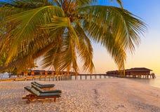 Loungers на пляже Мальдивов Стоковое Изображение RF