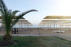 Loungers Солнця с зонтиком на пляже Туристическая индустрия Стоковые Фото