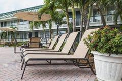 4 loungers солнца ладонями poolwith Флорида Стоковые Изображения RF