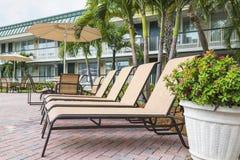 4 loungers солнца ладонями poolwith Флорида Стоковое фото RF