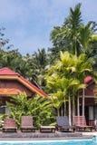 Loungers солнца бассейном с пальмами в тропиках Стоковое Изображение