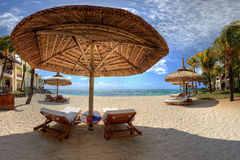 Loungers on a beach. Loungers on a beautiful beach royalty free stock image