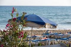 Loungers de Sun na praia Foto de Stock